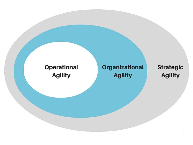 business agility diagram