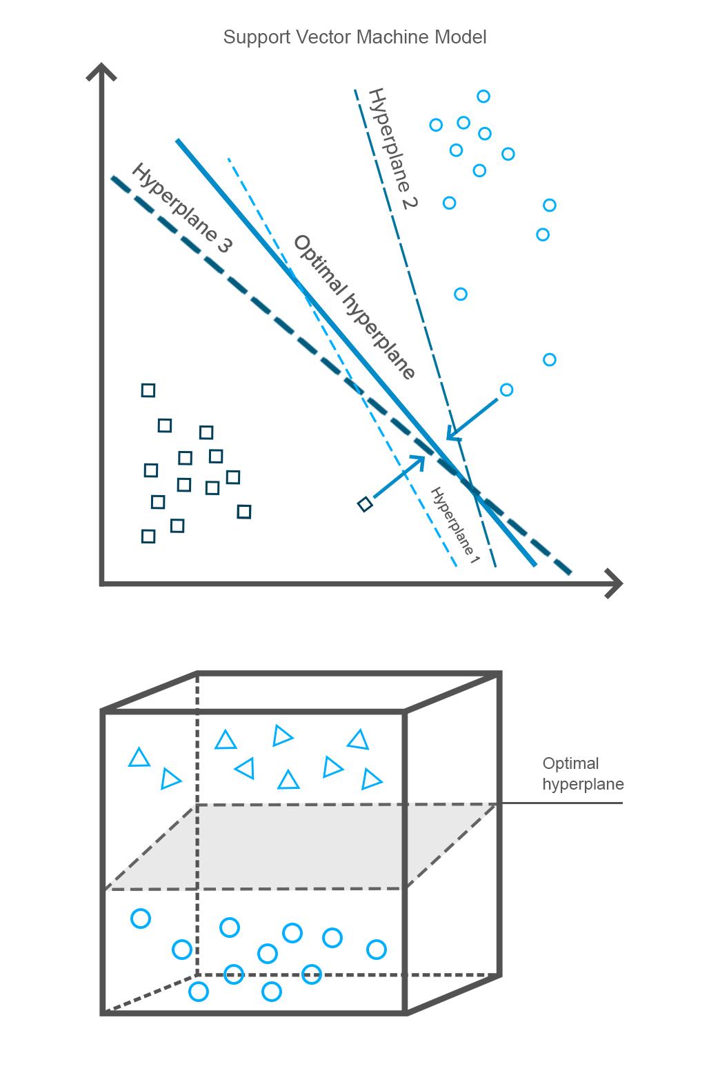 Support Vector Machine Model